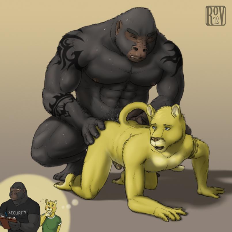 furry porn gay gorilla