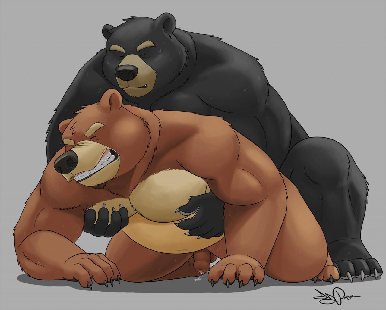 seks-gei-medvedi